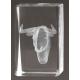 Cristal 3D - Toro